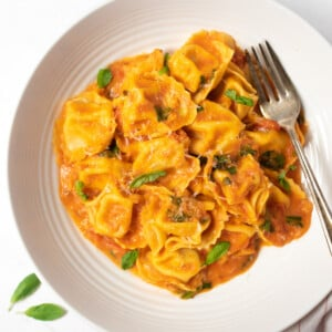 creamy tortellini pasta in a bowl garnished with basil leaves