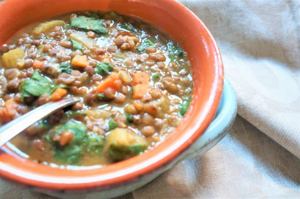 Hearty Brown Lentil Soup – Instant Pot Pressure Cooker