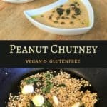 Super easy Peanut Chutney or Groundnut Chutney. A delicious and nutritious accompaniment to south indian favorites - idli and dosa | #chutney #peanut #groundnut #dip #southindian #indian #vitamix #blender #recipe #idli #dosa #vegan #glutenfree | pipingpotcurry.com