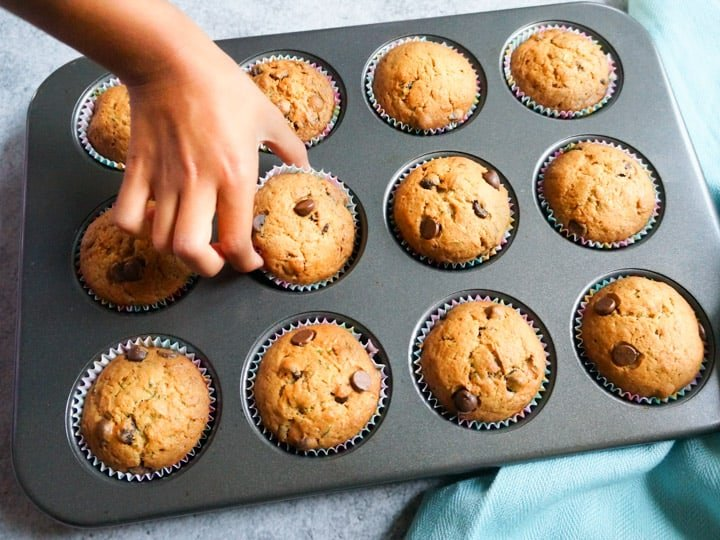 Perfectly baked Zucchini Chocolate Chip Muffins in a baking tray, one being picked by hand.