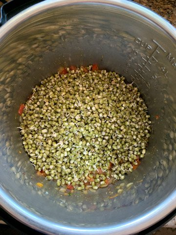 Sprouted green mung beans in the instant pot