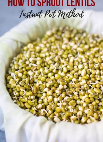 Sprouted lentils in a white cheese cloth