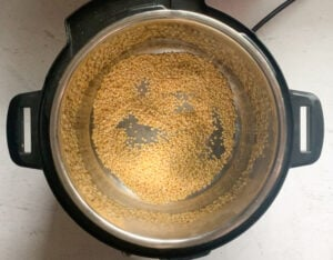 Roast Moong Dal in instant pot