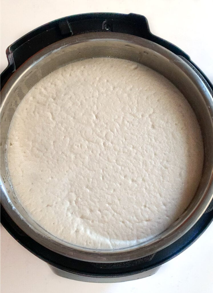 Perfectly fermented idli batter in the instant pot