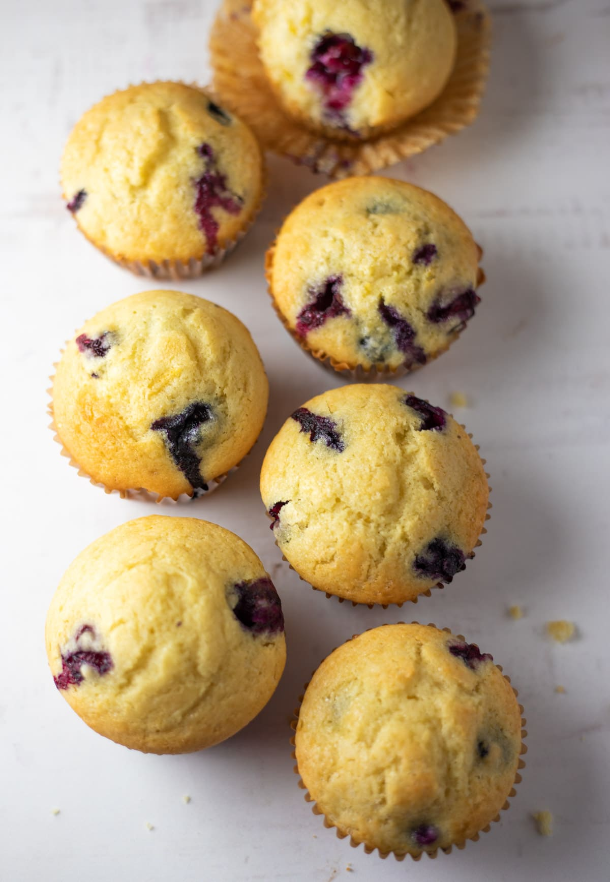 blueberry muffins on a white base