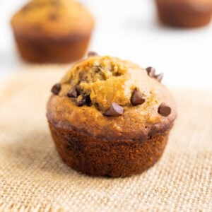 A freshly baked healthy muffin with chocolate chips