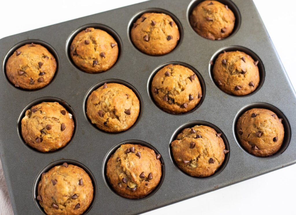 Muffins topped with chocolate chips freshly baked.