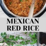 Instant Pot Spanish Rice (Mexican Rice)